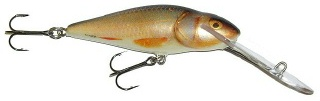 0001_Salmo_Perch_SDR_8_cm_[Real_Roach].jpg